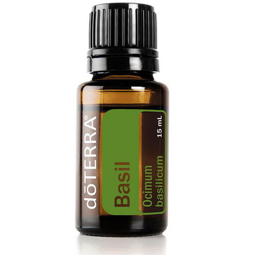15ml Bottle of Basil Essential Oil