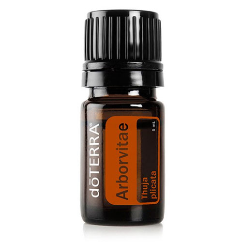 5ml Bottle of Arborvitae Essential Oil