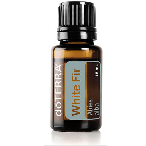 15ml bottle of White Fir Essential Oil