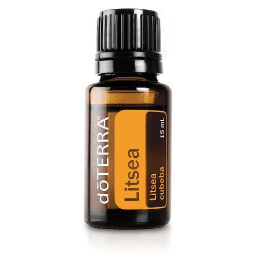 litsea essential oil
